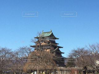 高島城の写真・画像素材[1040564]