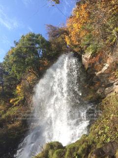 森の中の大きな滝 - No.1082270