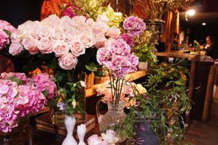 花の写真・画像素材[563886]