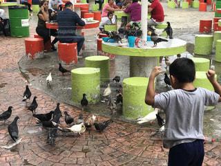 子供の写真・画像素材[564476]