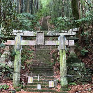 人影のない神社の入り口の写真・画像素材[3528913]