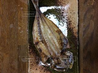 No.568500 魚