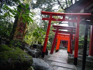 No.565483 神社