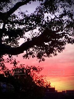 朝焼けの空の写真・画像素材[4192952]