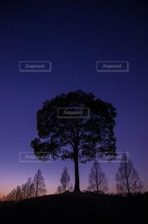 空の写真・画像素材[570520]