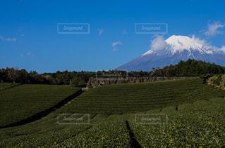 富士山の写真・画像素材[570526]