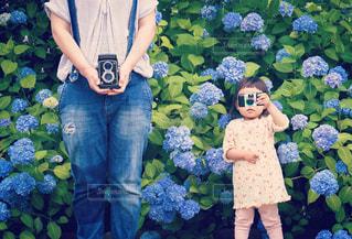 親子の写真・画像素材[567864]