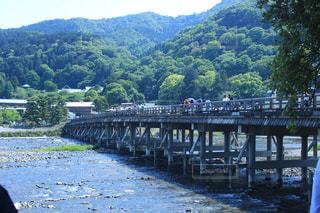 橋の写真・画像素材[568013]