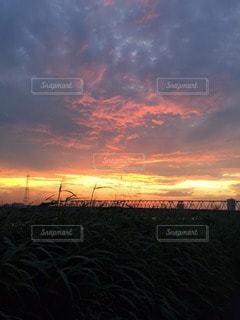 自然の写真・画像素材[11311]