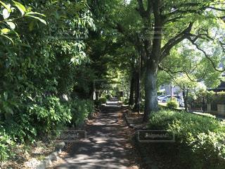 No.569383 京都
