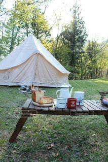 芝生のテントの写真・画像素材[987406]