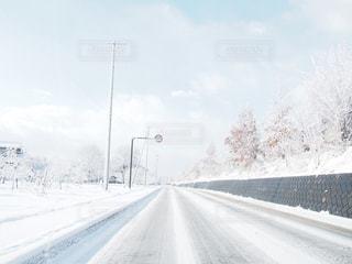 冬の写真・画像素材[570126]