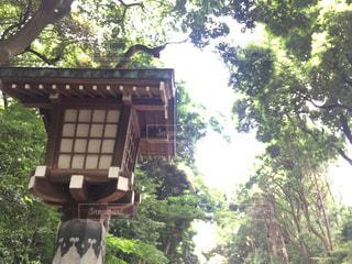 神社の写真・画像素材[570110]