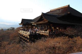 清水寺の写真・画像素材[571026]