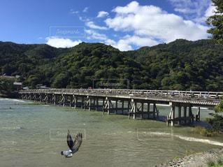 橋の写真・画像素材[574790]