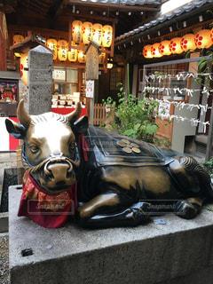 No.575109 京都