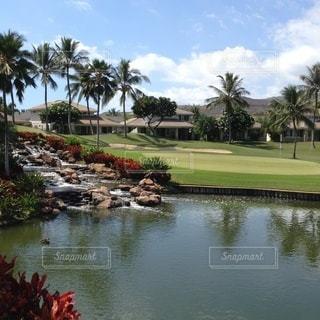 ハワイのゴルフ場の写真・画像素材[3639124]