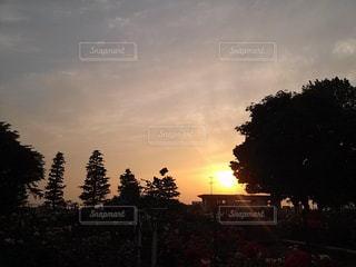 夕日の写真・画像素材[571812]