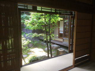 日本庭園の写真・画像素材[582830]
