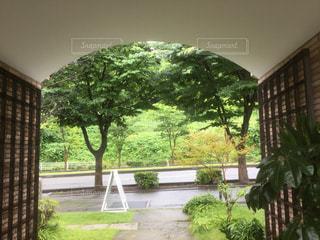 梅雨の写真・画像素材[584760]