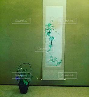 近くに塗られた壁のアップの写真・画像素材[737005]