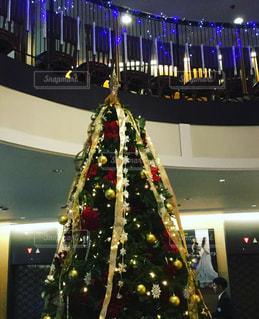 夜ライトアップされたクリスマス ツリーの写真・画像素材[879125]