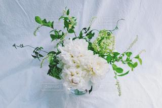 近くの花のアップの写真・画像素材[1178679]