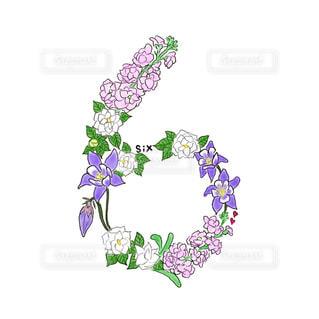 花の写真・画像素材[608940]