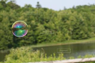 シャボン玉の写真・画像素材[573005]