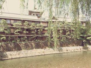 静岡の写真・画像素材[573901]