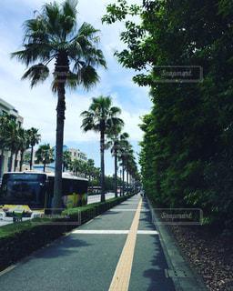 No.637697 バス