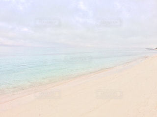 自然の写真・画像素材[574249]