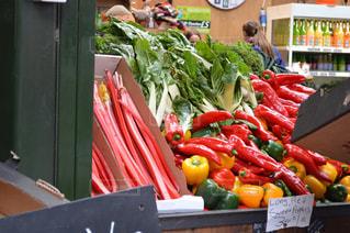 野菜の写真・画像素材[601336]