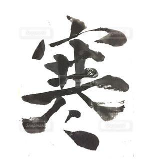 【寒】今日の漢字シリーズ〜あなたのブログを華やかに〜の写真・画像素材[995649]