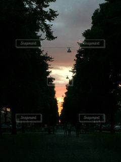 夕日の写真・画像素材[585095]
