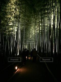京都の写真・画像素材[592110]