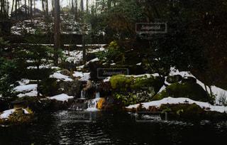冬の写真・画像素材[319374]