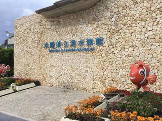 沖縄の写真・画像素材[990783]