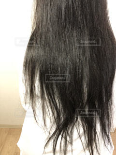 パサパサの髪の写真・画像素材[3153076]