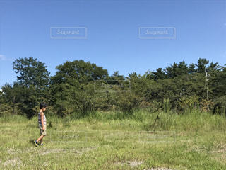 草の覆われてフィールド上に立っている人の写真・画像素材[780650]