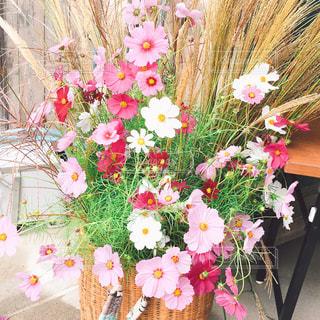 テーブルの上の花の花瓶の写真・画像素材[815782]