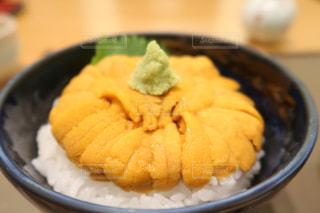 北海道函館で食べたウニ丼の写真・画像素材[1500927]