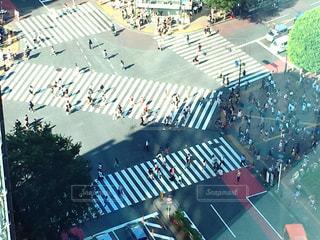 東京の写真・画像素材[585242]