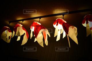 赤の明るい部屋の写真・画像素材[719989]