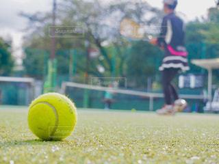 近くにテニスボールのアップの写真・画像素材[760597]