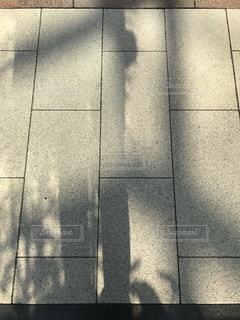 太陽の写真・画像素材[582756]
