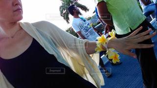花の写真・画像素材[588780]