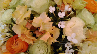花の写真・画像素材[595862]