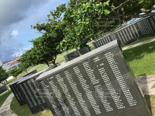 沖縄の写真・画像素材[583441]
