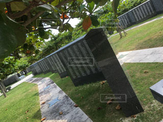 沖縄の写真・画像素材[583442]